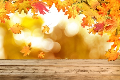 Empty wooden surface and beautiful autumn leaves on blurred background