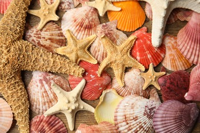 Beautiful sea stars and shells on wooden background, top view