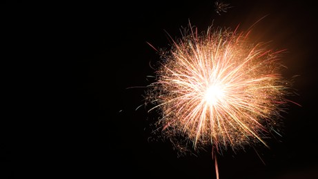 Beautiful bright firework lighting up night sky, space for text